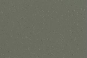 Dried Tarragon, 8644